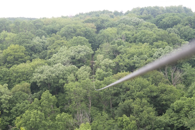 zipline_first real one